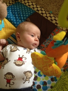 Fascinated by his play mat.