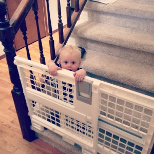 Baby gate fail. (climbed under the railing)