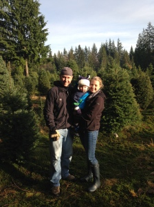 Getting our Christmas tree.