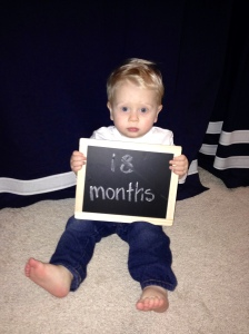 18 months old.